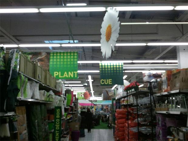 plant cue carrefour