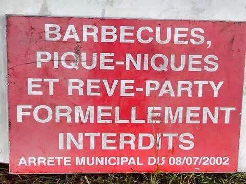 reve party